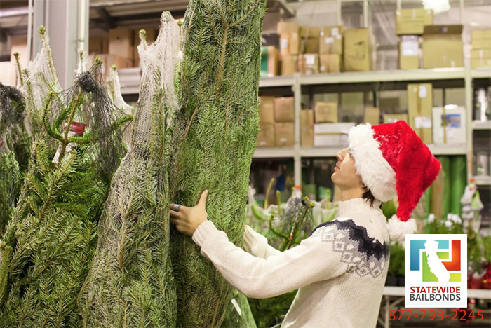 Christmas tree prices in California